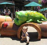 http://www.eichemiller.com/images/village-soft-playground.jpg